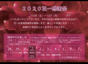 2020.11.27